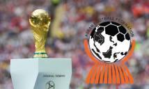 Tiếp bước Hàn Quốc và Nhật Bản, Đông Nam Á lên kế hoạch ứng cử đăng cai World Cup