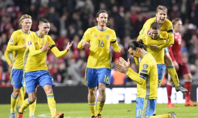 Những điều ít biết về ĐT Thụy Điển