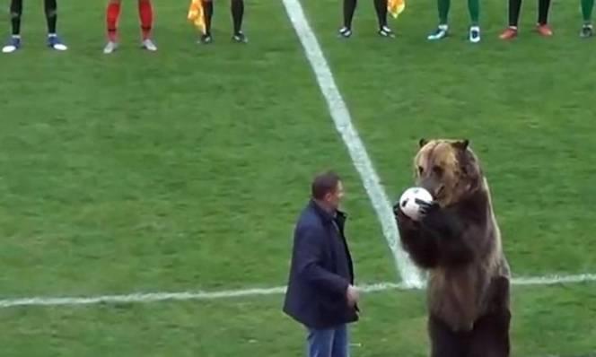 SỐC: Nga sử dụng gấu để