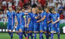 Những điều ít biết về ngựa ô Iceland tại EURO 2016