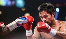 Chán chính trị, Manny Pacquiao sắp tái xuất